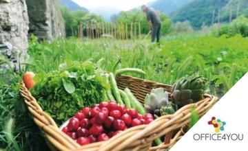 Αφορά γεωργούς και κτηνοτρόφους: Σε ποιες περιπτώσεις δίνεται έξτρα οικονομική ενίσχυση