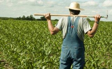 Ποιοι αγρότες θα λάβουν 14.000 ευρώ ως επιδότηση.Τα κριτήρια και οι προθεσμίες για αιτήσεις